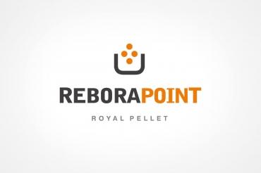 Rebora Point